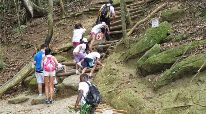 Trilha do Morro da Urca Fechada às segundas feiras para manutenção